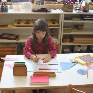 Metro East Montessori School